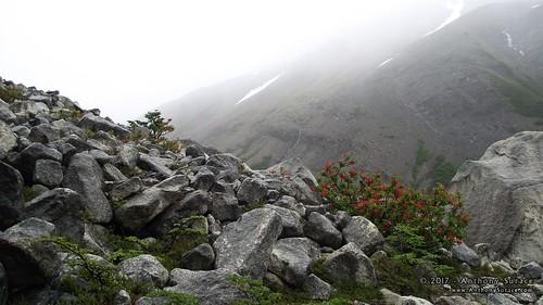 Valle Ascencio