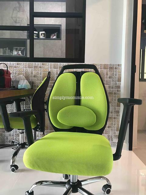 ErgoSpine Ergonomic Office Chair