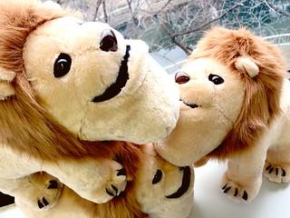 景品第二彈!《戽斗星球》厚到獅子BIG布偶 シャクレルプラネット ライオンBIGぬいぐるみ