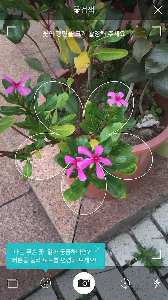 koreanapps-flowersearch10