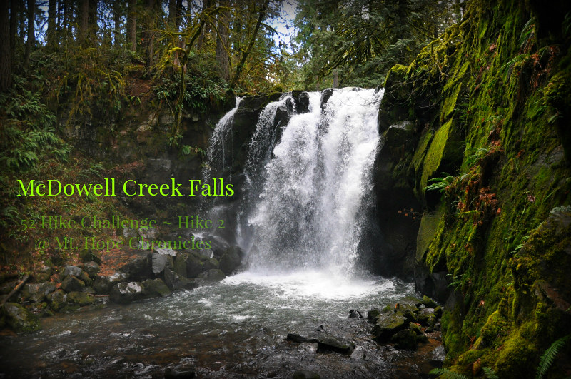McDowell Creek Falls Hike 2 @ Mt. Hope Chronicles