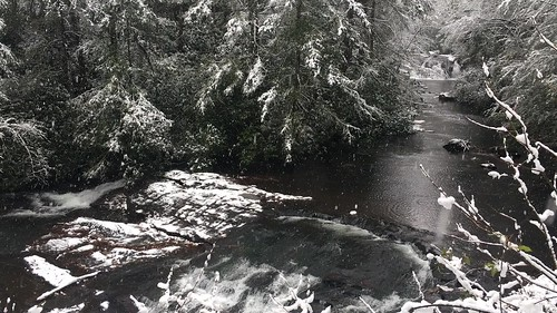 #SnowDay on the ChattOconeeNF near Suches, Georgia. Tag us with #ChattOconeeNF.