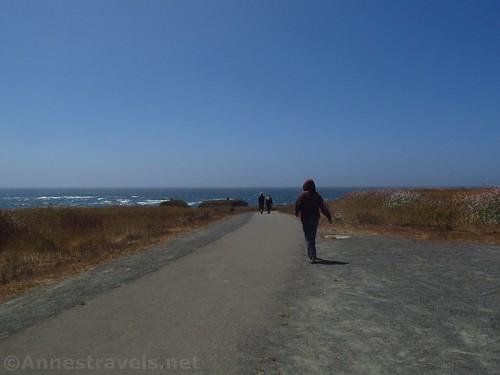 Returning down the Coastal Trail south of Glass Beach, California