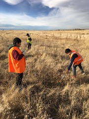 Participate in a Stewardship Project