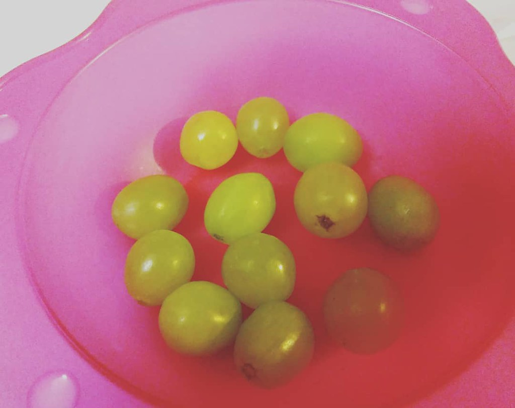 Waiting. New year in 3, 2... #newyear #uvas