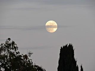 Moonrise 12/31/17