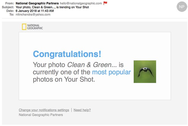 Your photo Clean  Green is trending on Your Shot