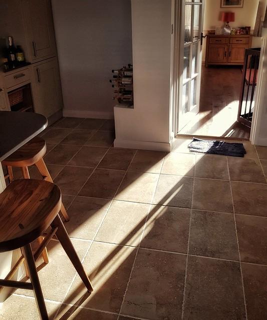 More sunlight studies