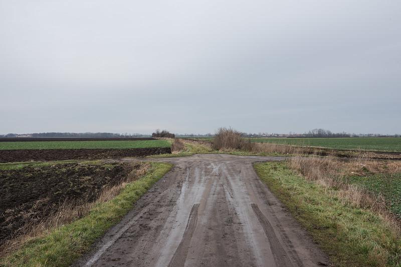 Line 262, 21 km, Borek Strzeliński/Großburg, 01.01.2018