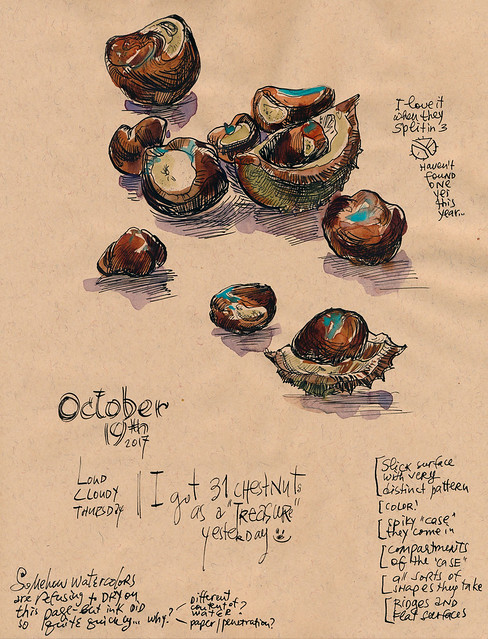 Sketchbook #109: Chestnuts