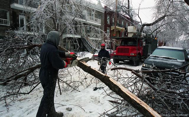 Découpage d'un arbre tombé au milieu de la rue suite au verglas. 8 janvier 1998. VM94-1998-0001-053. Archives de la Ville de Montréal.