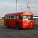 RF319 (MLL956)