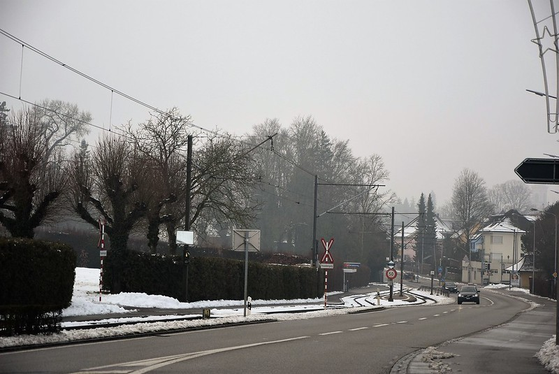 Road to Langendorf 20.12 (2)