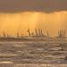 Kitesurfing @ Scheveningen