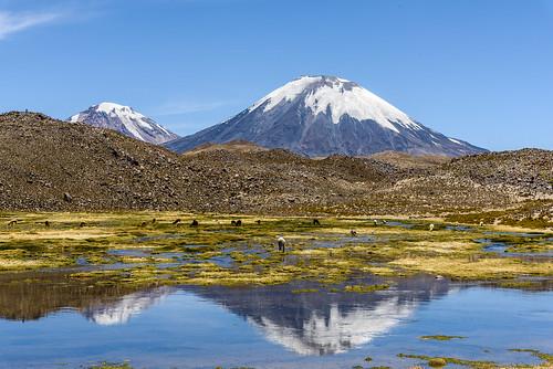 chili parinacota regióndearicayparinacota chile cl atacama desert woestijn vulkaan vulcano