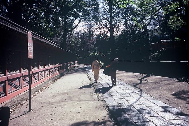 KONICA HEXAR RF+Voigtlander Color Scopar 35mm f2.5根津神社参道