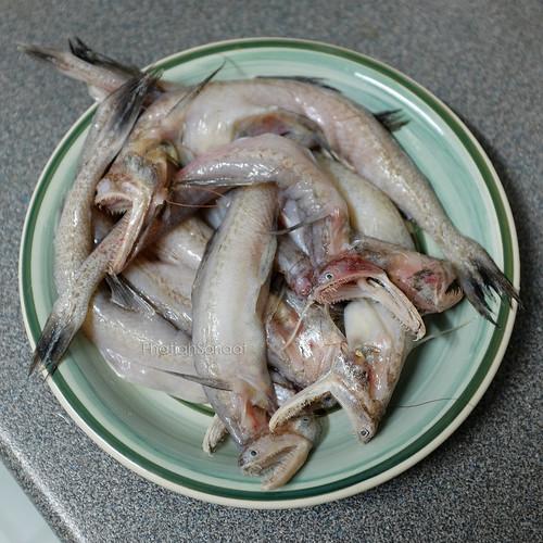 Ikan Lumi