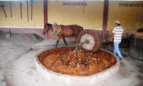 129 Mitla Mezcal (4)