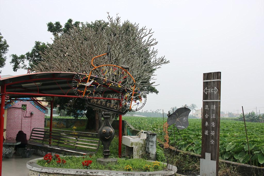 高樹農村嬉遊記 (2)