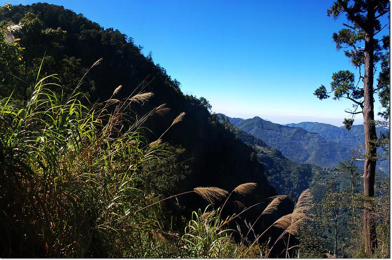 獅子頭山稜線西望獅子頭山(左)、嘉南雲峰(中)