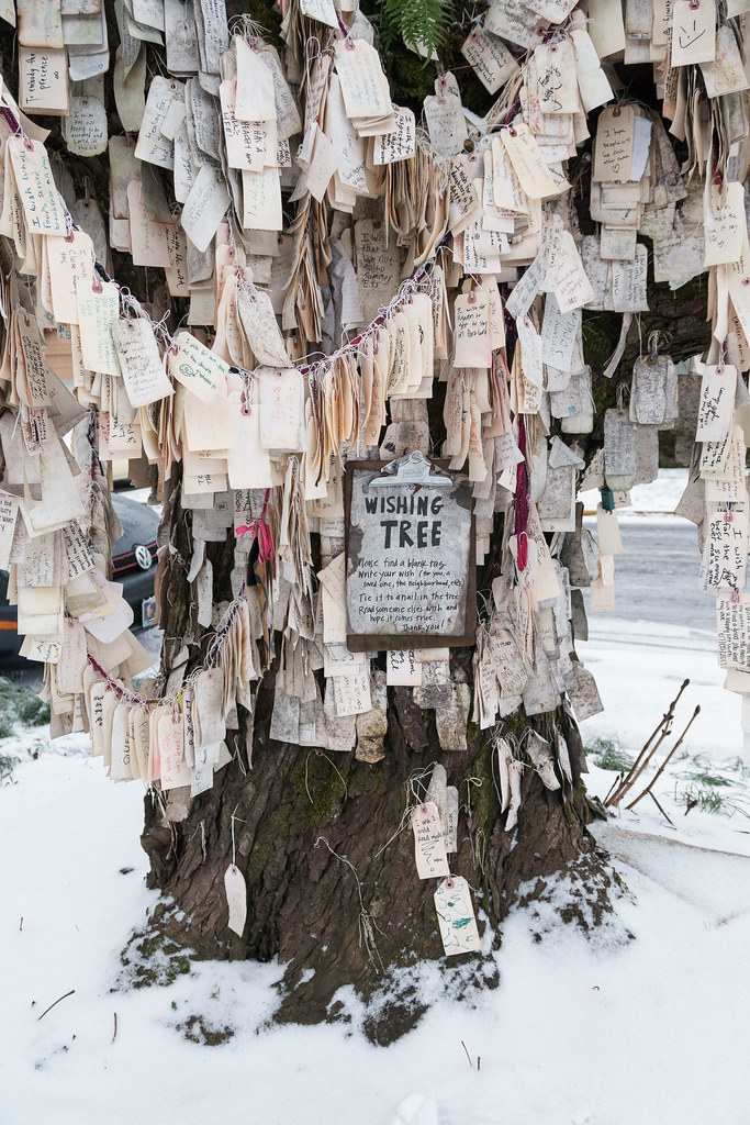 Many wishes hang down from the Wishing Tree on a snowy Christmas morning in the Irvington neighborhood of Portland, Oregon