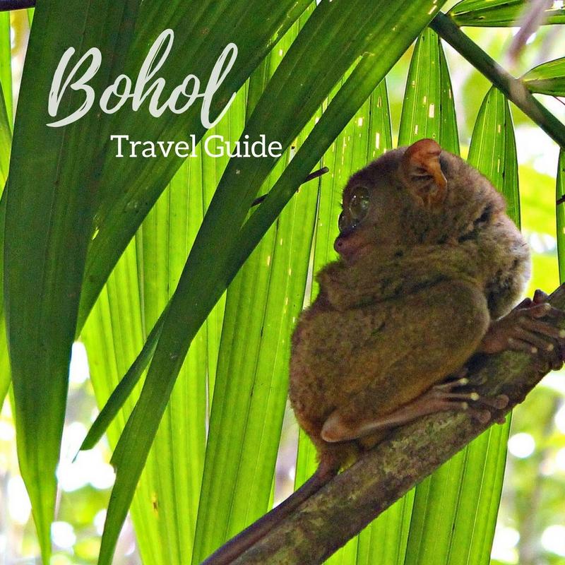 Travel Guide Bohol