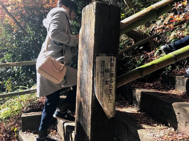 愛岐トンネル群 枕木