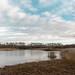 FROZEN LAKE, POTTERIC CARR, NATURE RESERVE, DONCASTERDSC_7223_LR_2.5