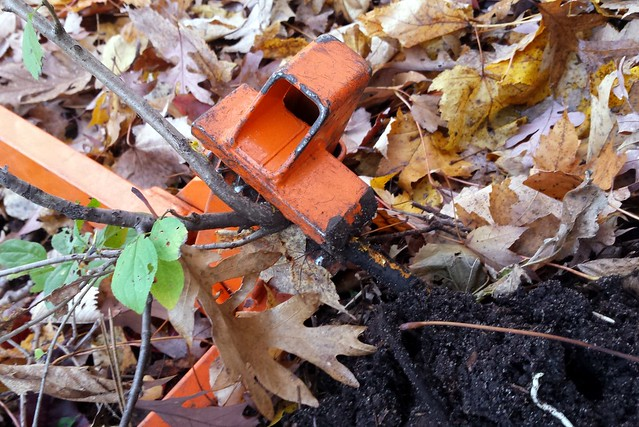an orange weed wrench clenched around a small woody plant, with roots coming out of the dirt on the right