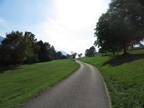 20170614 04 434 Jakobus Berg Wald Wiese Baum Weg