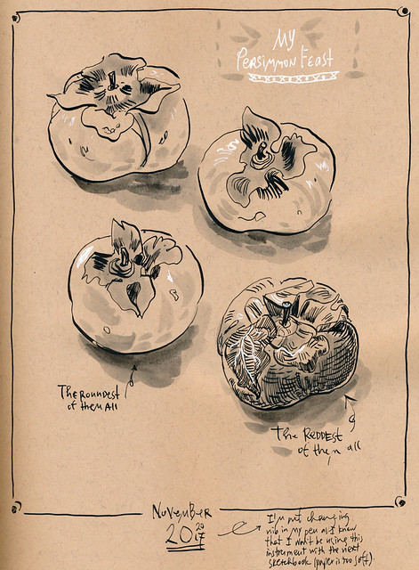 Sketchbook #109: Persimmons