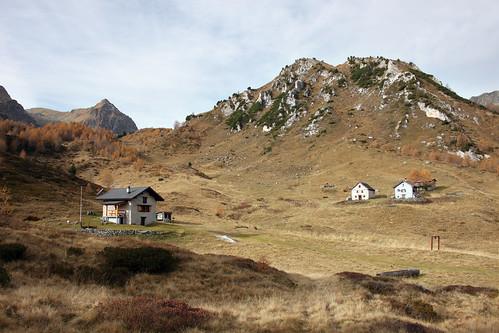 Campo Solario