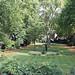 20150821_4892 garden in central Lodon