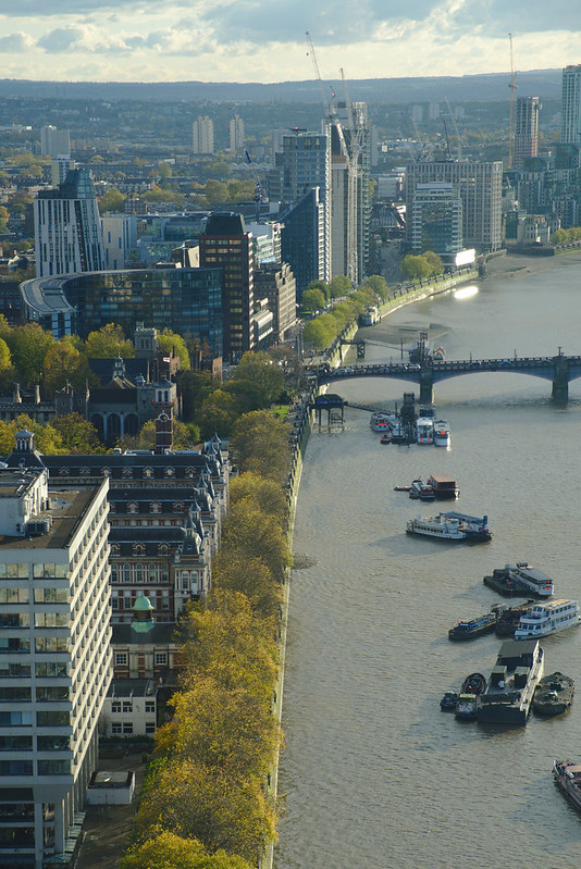 Looking south down the Thames, from the London Eye