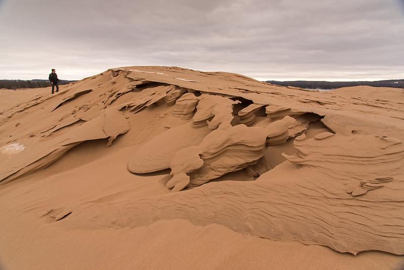 Dune Sculptures