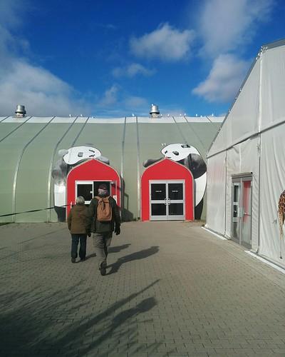Towards the exhibition hall #toronto #torontozoo #pandas #giantpandaexperience #latergram