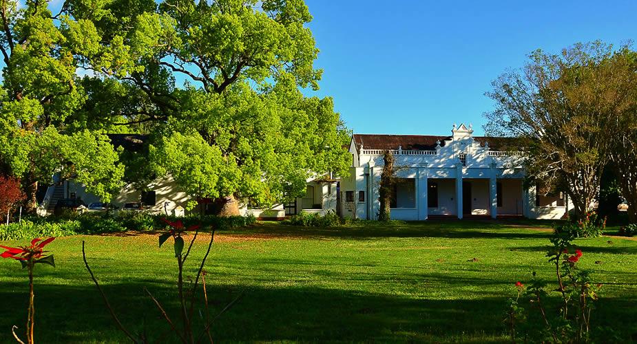Rondreis Zuid-Afrika: wijn proeven in Stellenbosch | Mooistestedentrips.nl