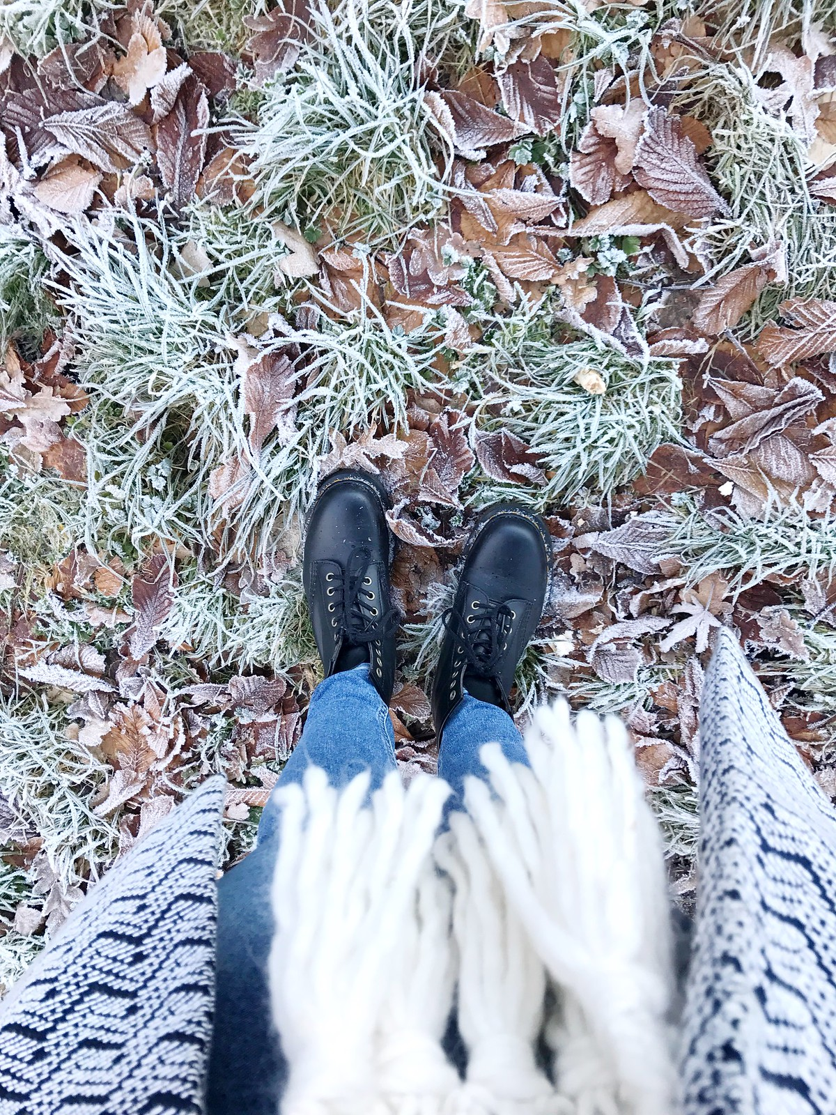 Vegan Doc Martens on frozen grass and leaves