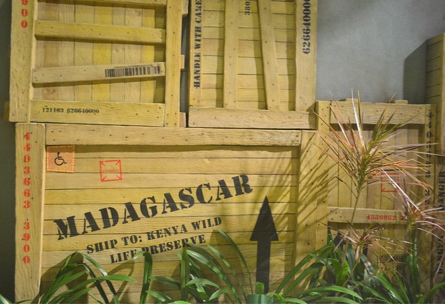 Must-Rides in Universal Studios Singapore madagascar crate adventure