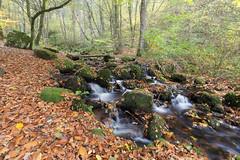 Rivière près de la cascade de brisecou - Photo of Antully
