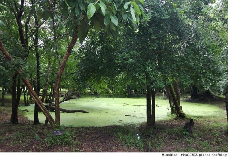 吳哥窟 吳哥窟自助 吳哥窟kkday 崩密列 暹粒 洞里薩湖 Green Era Travel Beng Mealea Kampong Khleang 吳哥窟一日遊 cambodia 吳哥窟水上人家 空邦克亮 kkday57