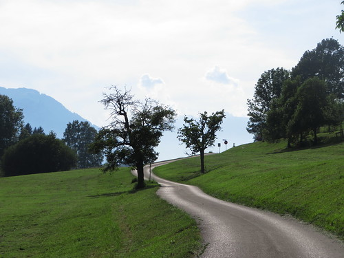 20170614 04 435 Jakobus Berg Wald Wiese Baum Weg
