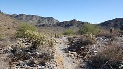 Phoenix Mountains Preserve