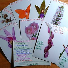 I hope Georgia Democrats like orchids, because I'm sending a blooming bouquet of #PostcardsToVoters for Phyllis Hatcher in tomorrow's mail. #FlipGA17 #ElectBlackWomen