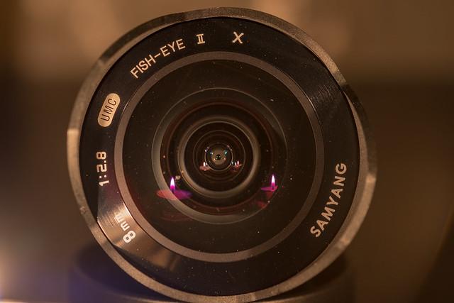 Macro Mondays, Fujifilm X-T2, XF60mmF2.4 R Macro