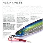 201801Lure&fly046