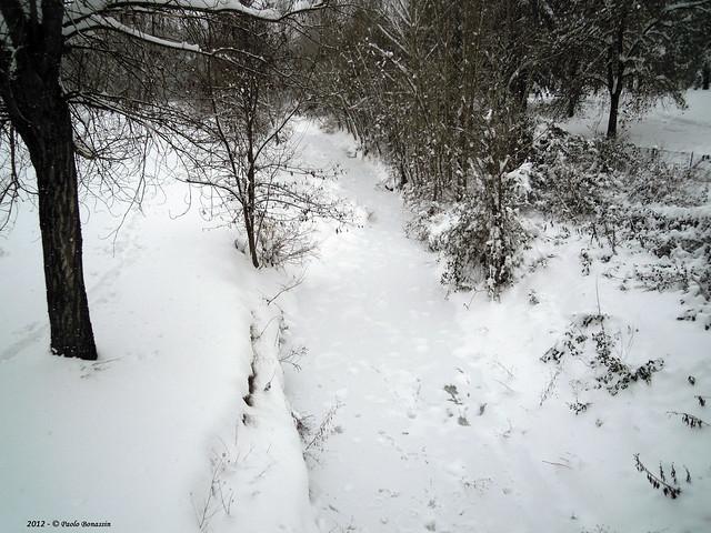 Neve lungo il Lavino, Nikon COOLPIX S640