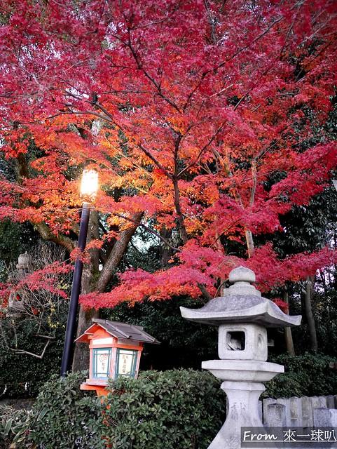 八阪神社35