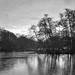 Wollaton lake in winter