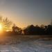 sundown RSPB Sandy